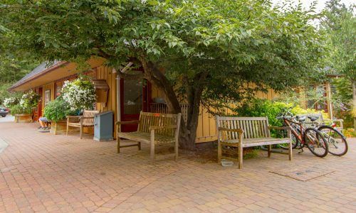 Comfortable wooden benches on the rustic pavers under a spreading summer tree in Village Square.